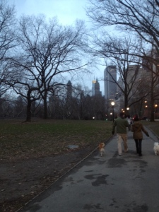 Central Park getting dark around 4:30. Another reason I hate winter.