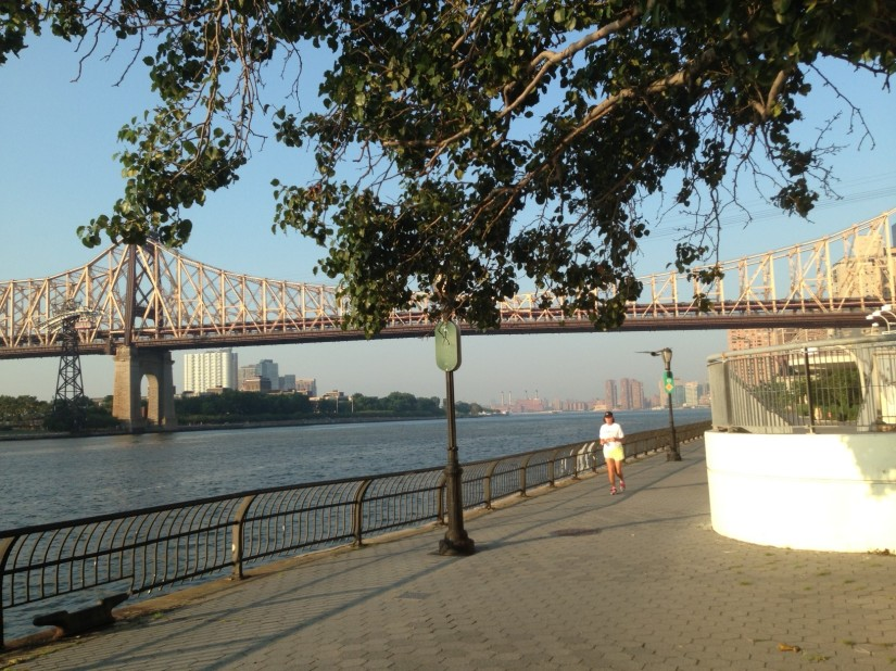 East River path. I rarely run you but you are pretty.